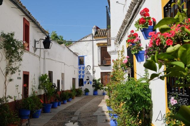 Córdoba para conocer sus patios