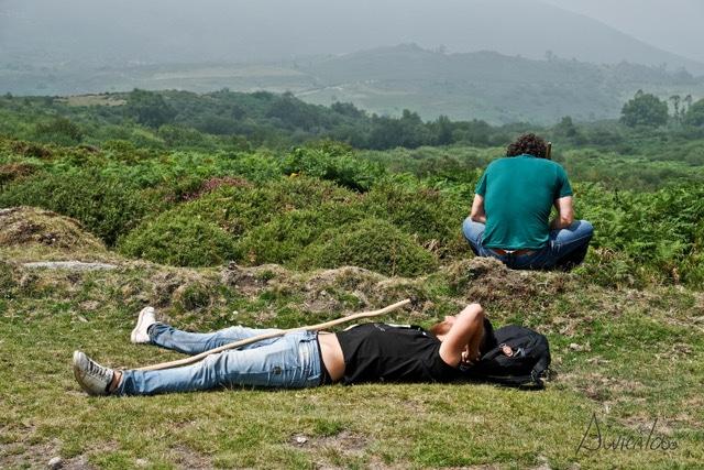 Aloitadores descansando en la Rapa das Bestas de Sabucedo en Pontevedra