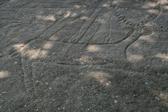 petroglifos en campolameiro. Terras de Pontevedra