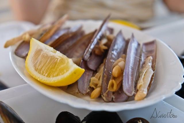 brindis con albariño y un tapa de navajas en Pontevedra
