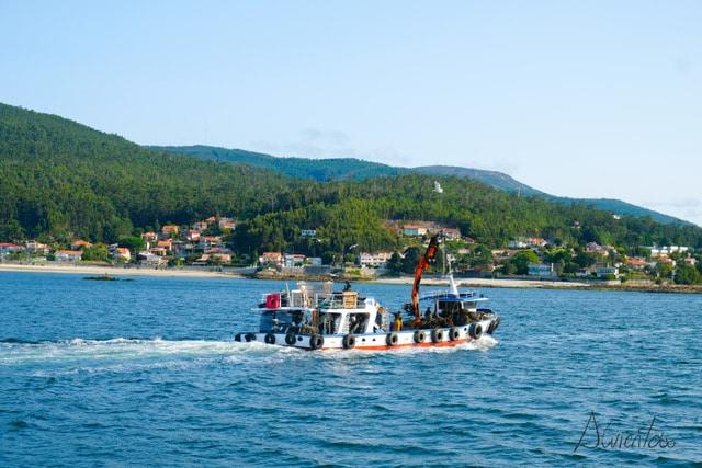 paseos en barco desde Combarro