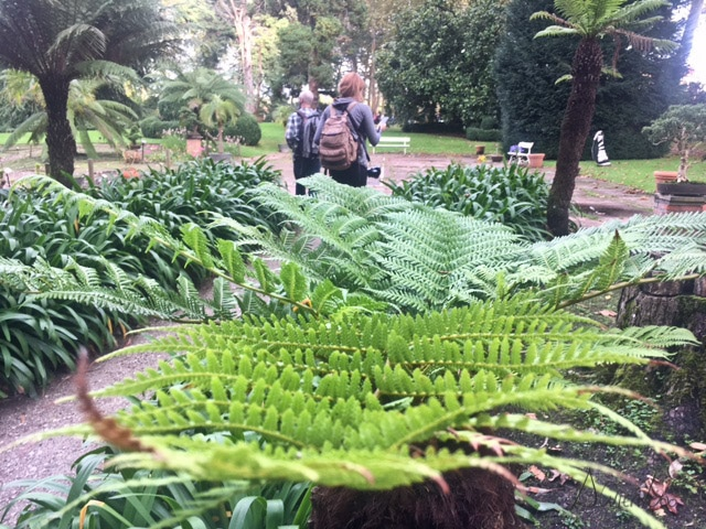 gijon botanico
