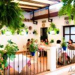 Dónde comer en Córdoba. Algunos de mis restaurantes favoritos