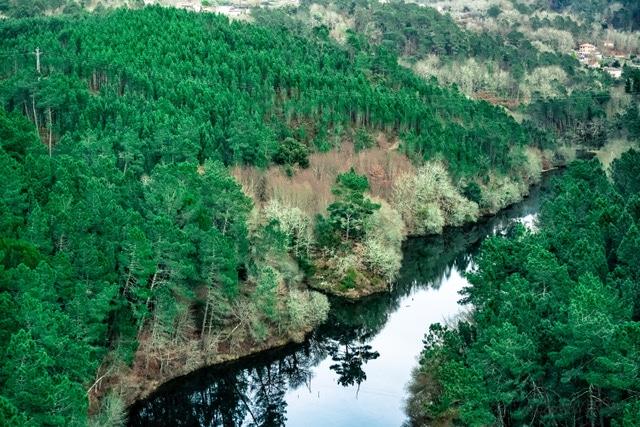 vista del Rio miño en O Ribeiro