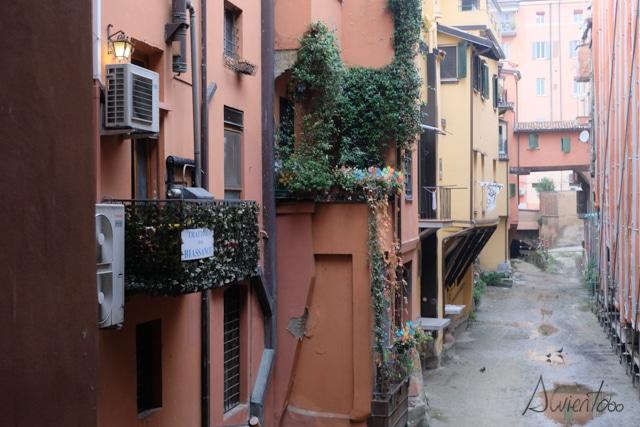 Canales en Bolonia