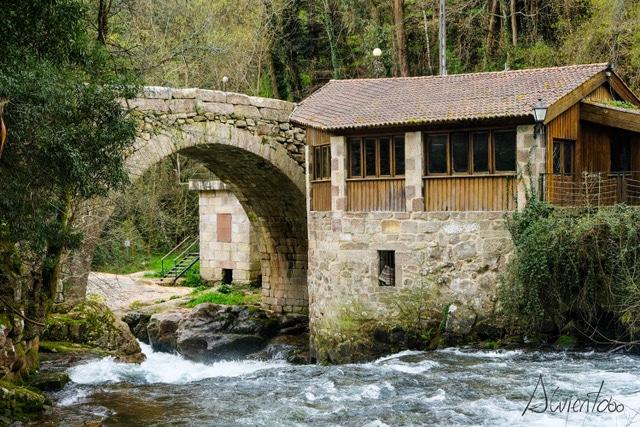 Rio Deva y su puente