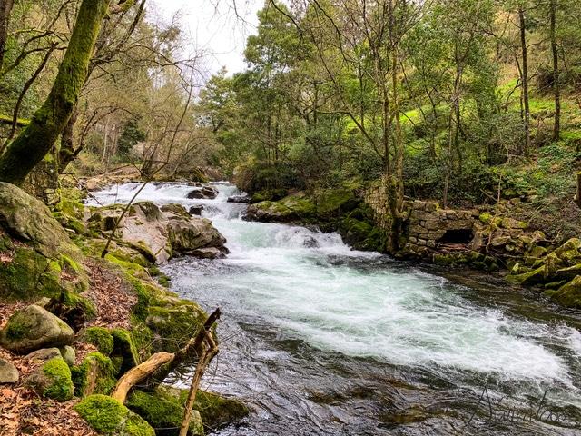 Rio Deva en Arbo