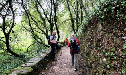 Etapas del Camino Portugués de la Costa