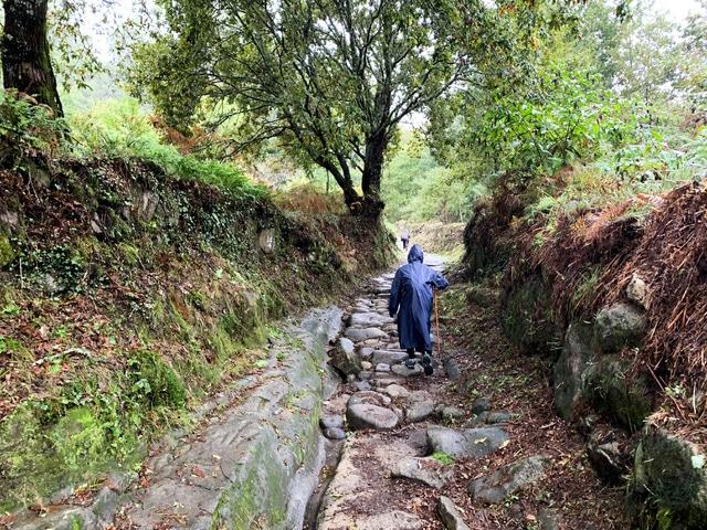Camino portugues top