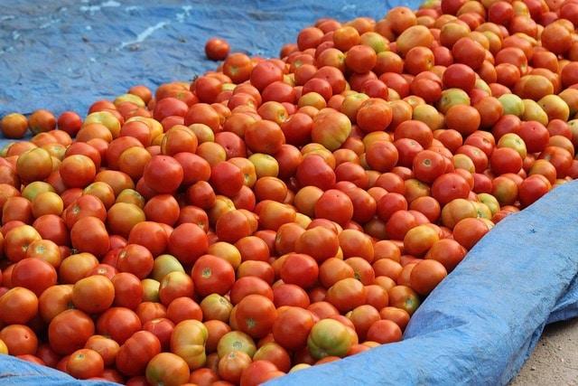 verduras en el mercadillo de Portugal