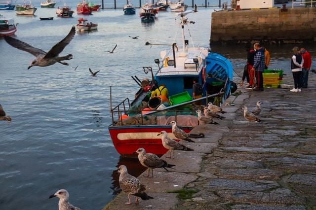 barcos de pesca en Galicia