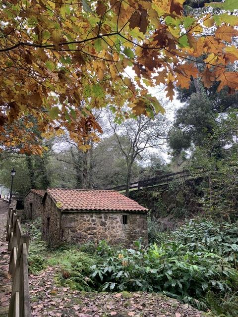 ruta de molinos de San Adrian de Toba