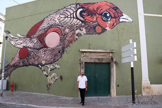 Barrio de Troino en Setubal