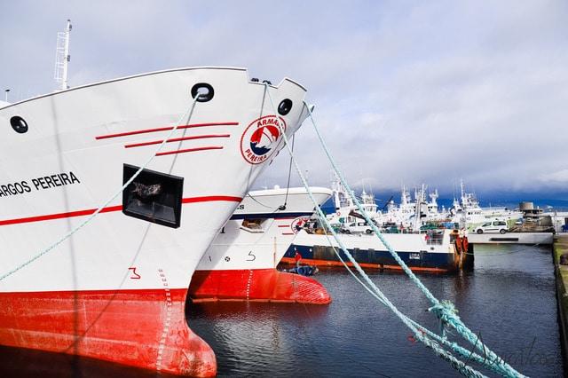 Flota de las Malvinas