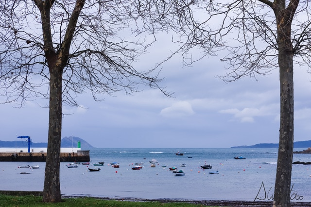 Isla de Toralla en Vigo