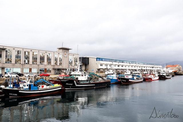 Barcos en el puerto de Vigo