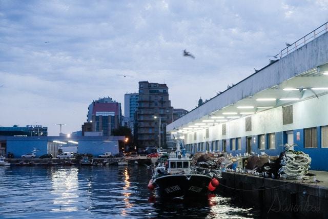 Visitar el Puerto de Vigo