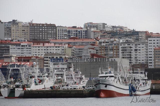 Puerto de Vigo- Vigo Pesqueiro