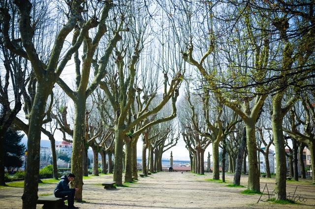 parques en Pontevedra