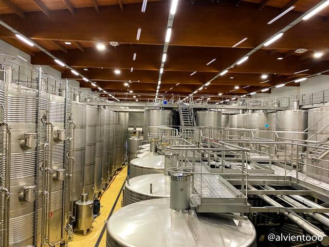 ruta do viño rias baixas